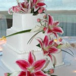 Lake Tahoe Wedding Cakes | Lake Front Wedding