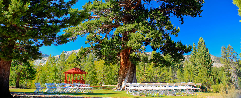 Lake Tahoe Wedding Venue| Paradise Park