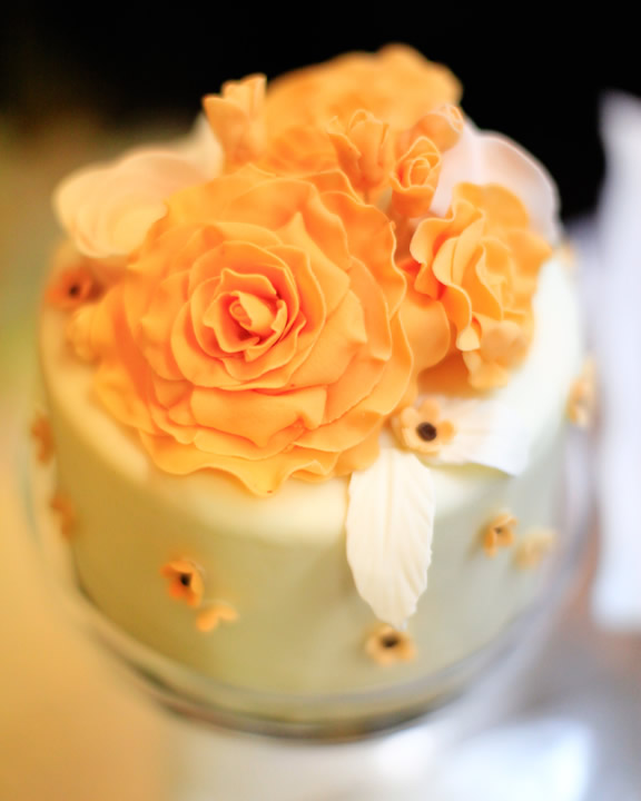 Wedding Cakes for your South Lake Tahoe Wedding I Lake Front ...